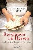Revolution im Herzen (eBook, ePUB)