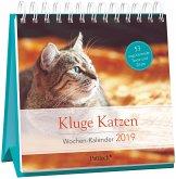 Kluge Katzen - Wochen-Kalender 2019