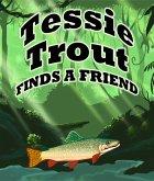 Tessie Trout Finds A Friend (eBook, ePUB)