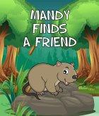 Mandy Finds a Friend (eBook, ePUB)