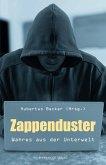 Zappenduster (eBook, ePUB)