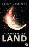 Flammendes Land / Morgan Bd.2