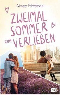 Zweimal Sommer zum Verlieben - Friedman, Aimee