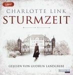 Sturmzeit Bd.1 (1 MP3-CD)