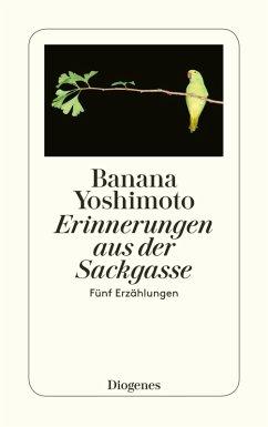 Erinnerungen aus der Sackgasse (eBook, ePUB) - Yoshimoto, Banana