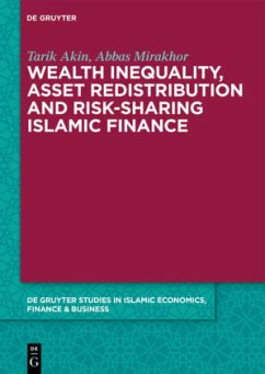 Wealth Inequality, Asset Redistribution and Ris...