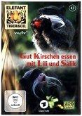 Elefant, Tiger & Co. - Gut Kirschen essen mit Lili und Salik, 1 DVD