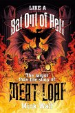 Like a Bat Out of Hell (eBook, ePUB)