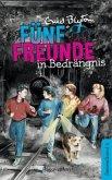 Fünf Freunde in Bedrängnis / Fünf Freunde Doppelbände Bd.4