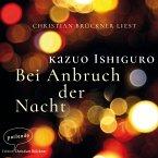 Bei Anbruch der Nacht (Ungekürzte Lesung) (MP3-Download)