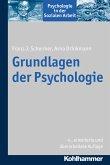 Grundlagen der Psychologie (eBook, PDF)