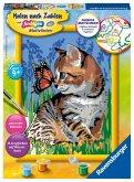 Katze mit Schmetterling / Malen nach Zahlen - Jeder kann malen (Mal-Sets), Bildgröße: 18 x 24 cm