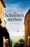 In Schönheit sterben / Robert Lichtenwald Bd.2