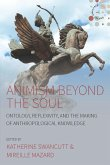 Animism beyond the Soul (eBook, ePUB)