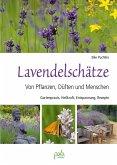 Lavendelschätze