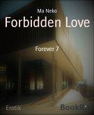 Forbidden Love (eBook, ePUB)