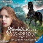 Ein geheimes Versprechen / Pferdeflüsterer Academy Bd.2 (2 Audio-CDs)