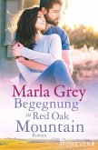 Begegnung in Red Oak Mountain (eBook, ePUB)