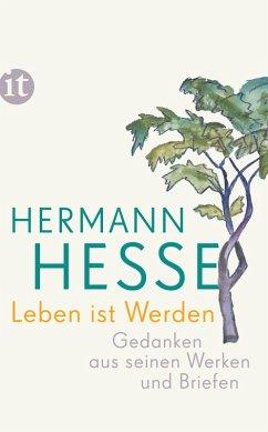 Leben ist Werden (eBook, ePUB) - Hesse, Hermann