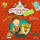 Henry und Leander / Die Schule der magischen Tiere - Endlich Ferien Bd.3 (2 Audio-CDs)