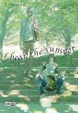 I Hear The Sunspot Bd.1