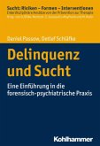 Delinquenz und Sucht (eBook, PDF)