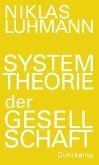 Systemtheorie der Gesellschaft (eBook, ePUB)