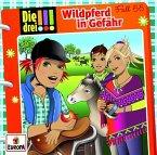 Wildpferd in Gefahr / Die drei Ausrufezeichen Bd.55 (1 Audio-CD)