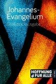 Johannes-Evangelium - Großdruckausgabe
