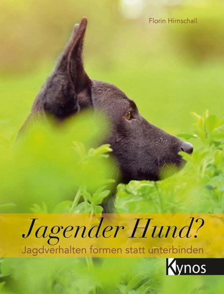 Jagender Hund? - Hirnschall, Florin