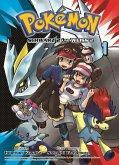 Pokémon Schwarz 2 und Weiss 2