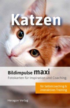 Bildimpulse maxi: Katzen - Pack, Bodo