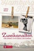 Zweikanalton (eBook, ePUB)