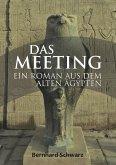 Das Meeting (eBook, ePUB)