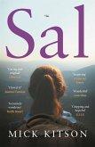 Sal (eBook, ePUB)