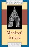 Medieval Ireland (eBook, PDF)