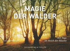 Tischaufsteller Magie der Wälder - Schönberger, Kilian