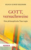 Gott, versuchsweise (eBook, PDF)