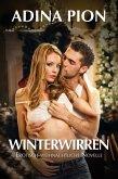 Winterwirren (eBook, ePUB)