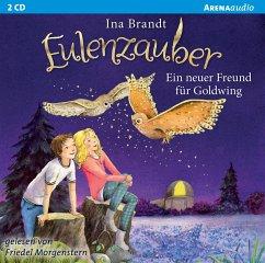 Ein neuer Freund für Goldwing / Eulenzauber Bd....