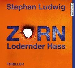 Zorn - Lodernder Hass / Hauptkommissar Claudius Zorn Bd.7 (1 Audio-CD) - Ludwig, Stephan