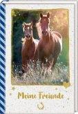 Freundebuch - Pferdefreunde - Meine Freunde. Galoppierende Pferde