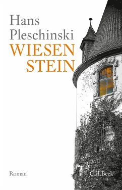 Wiesenstein (eBook, ePUB) - Pleschinski, Hans