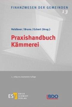Praxishandbuch Kämmerei - Behnke-Hahne, Beate; Black, Markus; Brüning, Christoph; Bruns, Mario; Eckert, Christoph; Eilenfeld, Frank