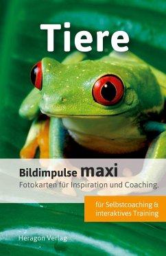 Bildimpulse maxi: Tiere - Pack, Bodo