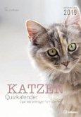 Katzen Quizkalender 2019