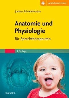 Anatomie und Physiologie - Schindelmeiser, Jochen