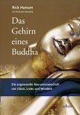 Das Gehirn eines Buddha (eBook, ePUB)