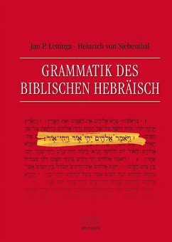 Grammatik des Biblischen Hebräisch (eBook, PDF) - Lettinga, Jan P.