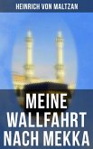Meine Wallfahrt nach Mekka (eBook, ePUB)